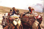 afshar nomads iran